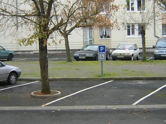Un arbre sur une place handicapée